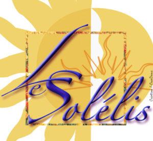 villeurbanne-immo-solelis-logo